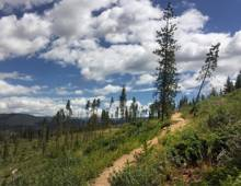 Summer Hikes   Breck Local's Guide   Paragon Lodging